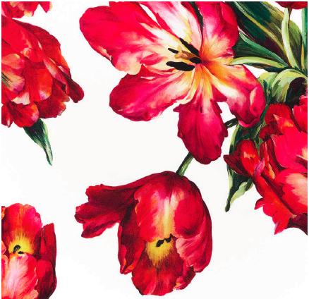"""Joshua Jensen-Nagle, """"Dolce & Gabbana's Garden"""""""